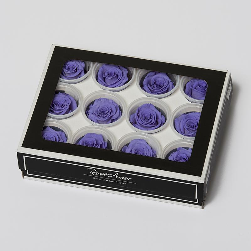 VIO-01 violett