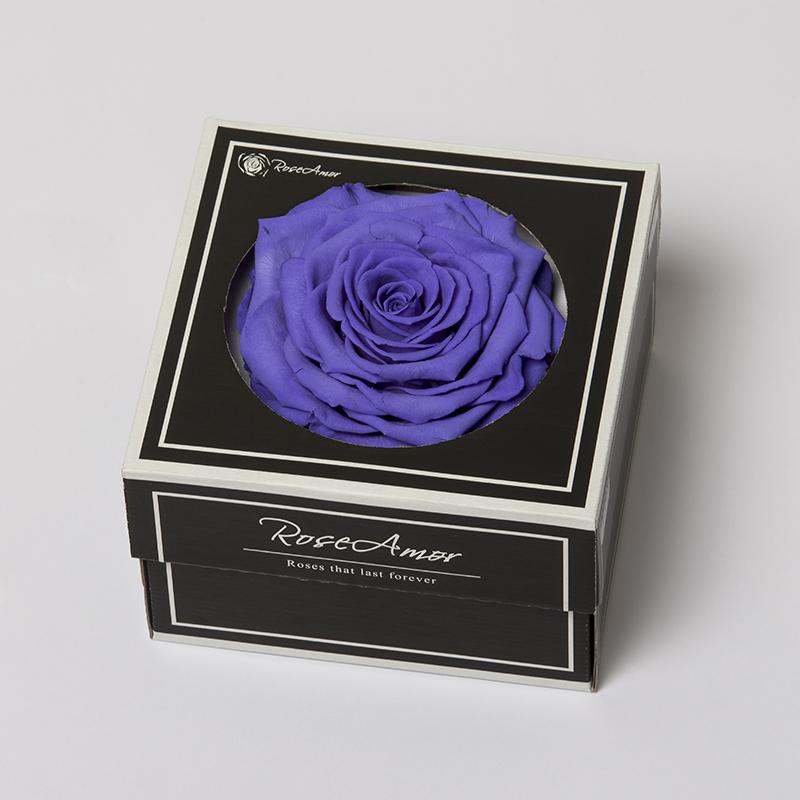 XXL VIO-01 violett