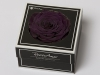 XXL PUR-01 violett