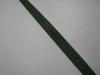 Pandanus Green